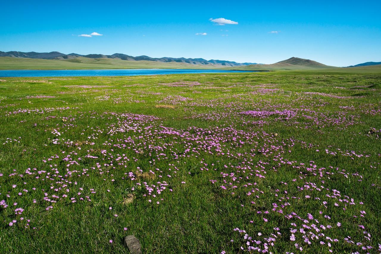 Climate in Ulaanbaatar, Mongolia |Ulaanbaatar Climate