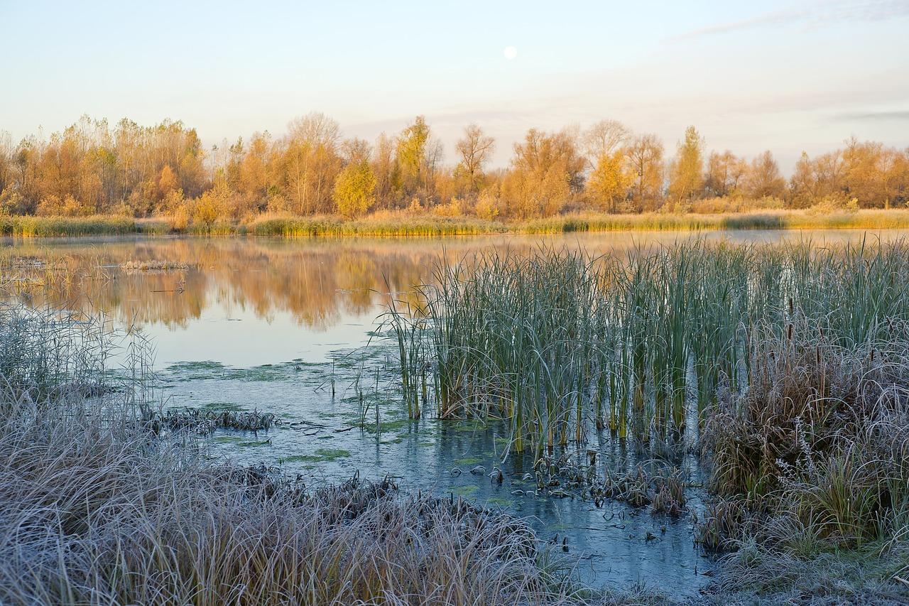 Eastern Siberia: climate, nature