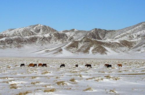 Climate Ulaanbaatar: Temperature, Climograph, Climate ... |Ulaanbaatar Climate